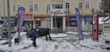 Bayat Belediyesi'nden Kar Mücadelesine Devam